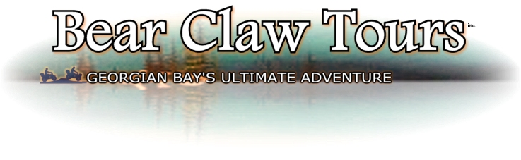 If you would like a Bear Claw Tours ATV Adventure of your own ... click here for more details.